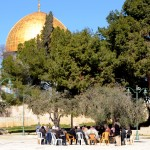 Israel 2012 051