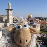 Israel 2012 074