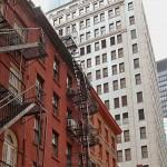 New York313