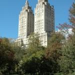 New York814