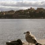 Stockholm_24