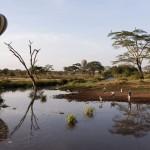 Tansania 2013_277