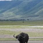 Tansania 2013_361