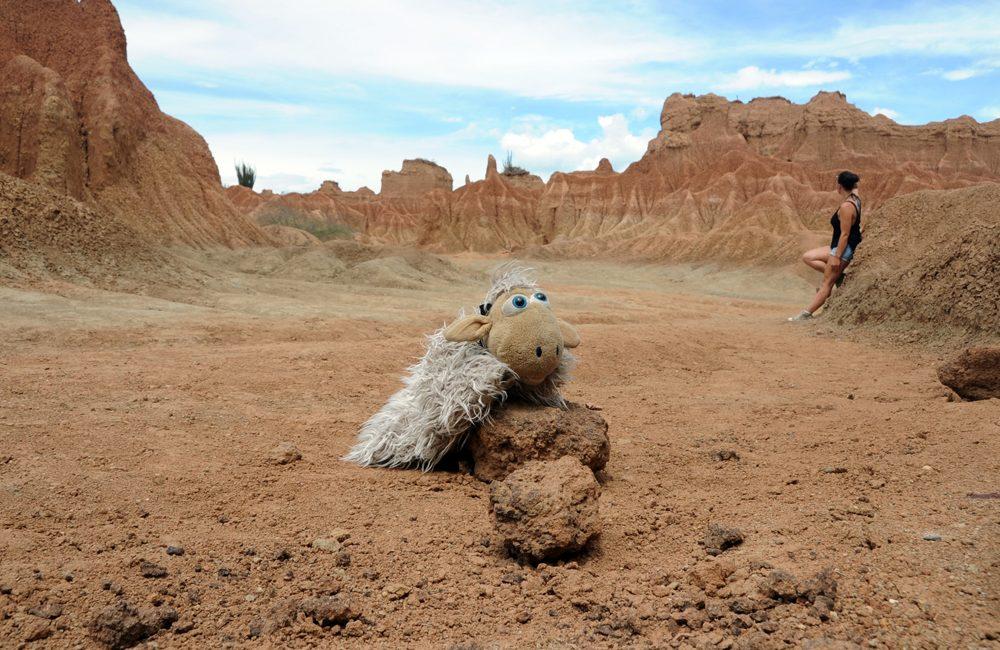 Auf einmal stand ich in der Wüste…