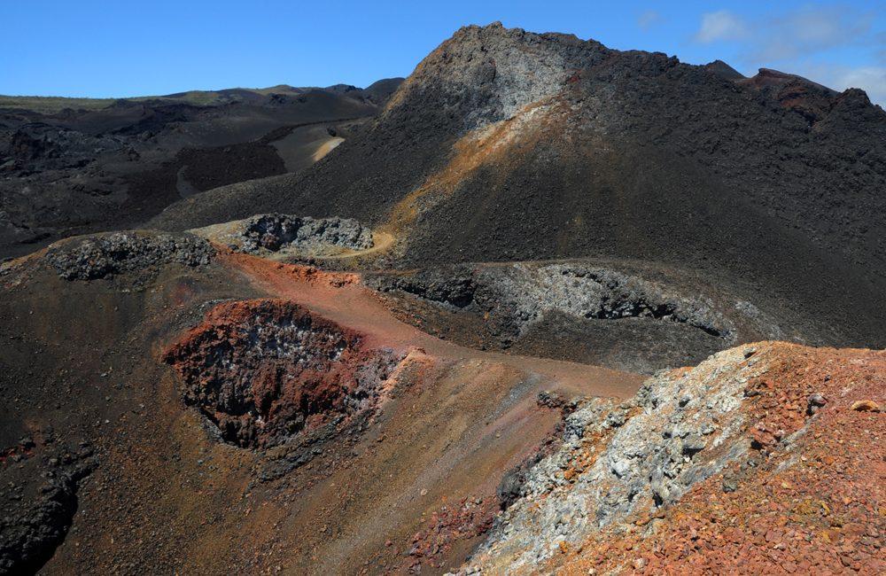 Ecuador – Galapagos – 2016 – Natur I