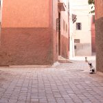 Marrakesch 2017_18
