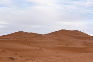 Wüstentour 2017_85-2
