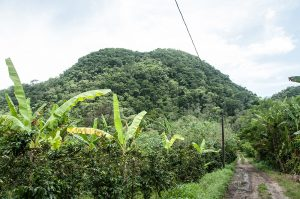 Honduras 2018_121
